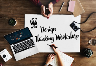 WWF Design Thinking Workshop